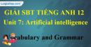 Vocabulary & Grammar - trang 13 Unit 7 SBT Tiếng anh 12 mới