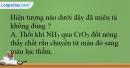 Bài 34.10, 34.11, 34.12 trang 82 SBT Hóa học 12