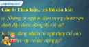 A. Hoạt động thực hành - Bài 26C: Liên kết câu bằng từ ngữ thay thế