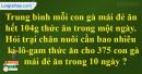 Tiết 63 Bài 1, bài 2, bài 3  trang 73 sgk Toán 4