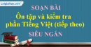 Ôn tập và kiểm tra phần Tiếng Việt (tiếp theo)