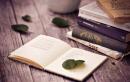 Soạn bài Tìm hiểu chung về văn miêu tả