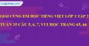 Giải câu 5, 6, 7, vui học trang 65, 66