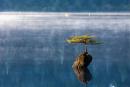 Lao động là đôi cánh của ước mơ, là cội nguồn của niềm vui và sáng tạo