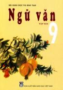Chương trình địa phương (phần Tiếng Việt) lớp 9 tập 2 - Ngắn gọn nhất