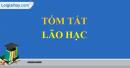 Viết một đoạn văn từ 8 đến 10 câu tóm tắt truyện ngắn Lão Hạc của Nam Cao