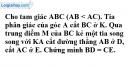 Bài 5 trang 156 Vở bài tập toán 8 tập 2