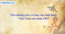Nêu những nét cơ bản của tình hình Việt Nam sau năm 1867