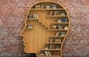 Giá trị văn học và tiếp nhận văn học
