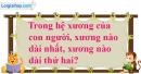 Câu 2 trang 90 SGK Tin học 8