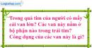 Câu 3 trang 90 SGK Tin học 8