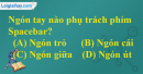 Câu 3 trang 40 SGK Tin học 6