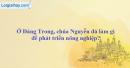 Ở Đàng Trong, chúa Nguyễn đã làm gì để phát triển nông nghiệp?