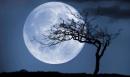 Ngắm trăng (Vọng nguyệt) trang 37 SGK Ngữ văn 8 tập 2