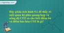 Hãy phân tích hình 9.1 để thấy rõ mối quan hệ giữa quang hợp và nồng độ CO2 và cho biết điểm bù và điểm bão hòa CO2 là gì?