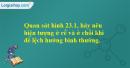 Quan sát hình 23.1, hãy nêu hiện tượng ở rễ và ở chồi khi để lệch hướng bình thường.
