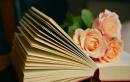 """Nhà văn M.Goóc-ki cho rằng: """"Văn học là nhân học"""". Hãy trình bày ý kiến của anh (chị) về quan niệm trên - Ngữ Văn 12"""