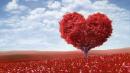 Nghị luận xã hội về lòng yêu thương