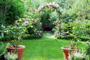 Từ bài văn Lao xao của Duy Khán, em hãy tả lại khu vườn