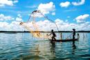Viết đoạn văn tổng phân hợp (khoảng 12 câu) nêu cảm nhận về 4 câu thơ đầu bài Đoàn thuyền đánh cá