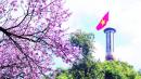 Tổng hợp 5 cách kết bài cho tác phẩm Đất nước - Nguyễn Đình Thi