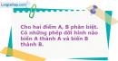 Bài 19 trang 8 SBT Hình Học 11 nâng cao