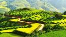 Đất nước (Nguyễn Đình Thi)
