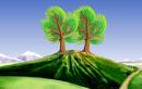 """Từ văn bản """"Hai cây phong"""", hãy viết 1 đoạn văn (khoảng 7 - 10 câu) về tình yêu quê hương."""