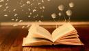 Đề văn thuyết minh và cách làm bài văn thuyết minh