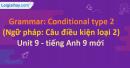 Grammar: Conditional type 2 - Unit 9 SGK Tiếng Anh 9 mới