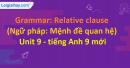 Grammar: Relative clause - Unit 9 SGK Tiếng Anh 9 mới