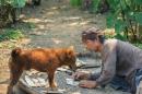 Nếu được là người chứng kiến cảnh lão Hạc kể chuyện bán chó với ông Giáo trong chuyện ngắn của Nam Cao thì em sẽ ghi lại câu chuyện đó như thế nào?