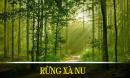 Nét tính cách tiêu biểu của nhân vật Tnú trong truyện ngắn Rừng xà nu