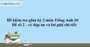 Đề số 2 - Đề kiểm tra giữa kì 2 - Tiếng Anh 10 mới