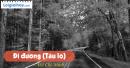 Viết một đoạn văn nêu cảm nghĩ của em về Bác qua bài thơ Đi đường - Hồ Chí Minh