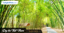 """Viết đoạn văn nêu cảm nhận của em về sự gắn bó của cây tre với đời sống con người Việt Nam trong văn bản """"Cây tre Việt Nam"""" của Thép Mới"""