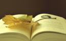 Cảm nhận khi đọc đoạn trích Sau phút chia li
